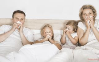 Профилактика эпидемии гриппа