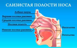 Как избавиться от сухости носоглотки