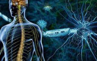 Лечение рассеянного склероза в пироговской больнице