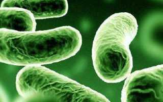 Как диагностировать туберкулез на ранней стадии