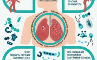 Передается ли через кровь туберкулез