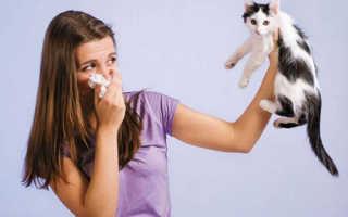 Аллергический ринит тесты