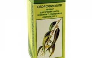 Хлорофиллипт спиртовой 1 инструкция по применению