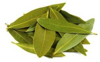 Лечение артроза лавровым листом